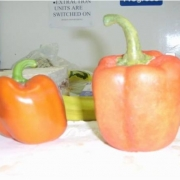 latex pepper (on right)